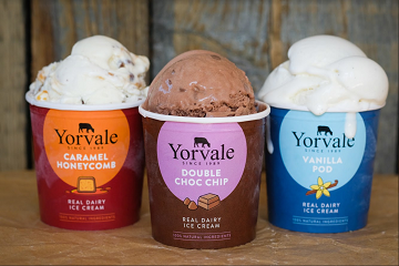 The Leisure Food & Beverage : Yorvale Ice Cream Makers: Get the Scoop