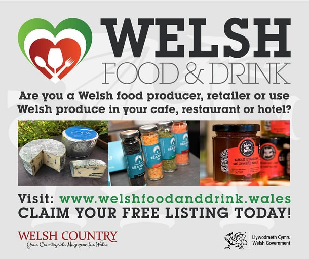 Welsh Food and Drink: Product image